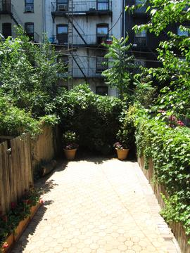 Garden and patio