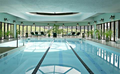 Indoor swimming pool, with jacuzzi.