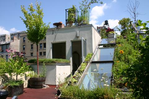 The step-out roof garden is on two levels joined by a planted hillside ramp; approx 950 sq ft total