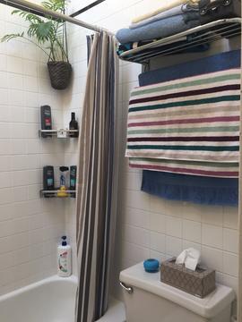 Bathroom (full bath)