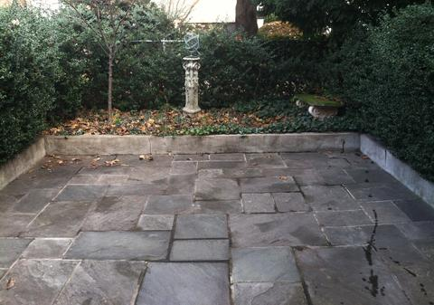 bluestone backyard with Japanese Boxwood privacy hedge.
