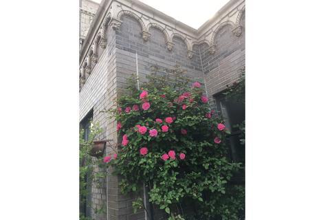 Rose garden & gargoyles